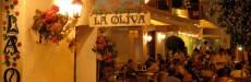 LA OLIVA - Ibiza
